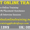 DotNet Online Training And Job Assistance in USA