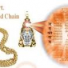 ORIGINAL HANUMAN CHALIS YANTRA FOR 2000 ONLY