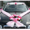 VIP decor for all type and size of cars