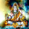 """Free Get Your Love Back Solution Parkash acharya Shastri ji"""" 9680466002"""